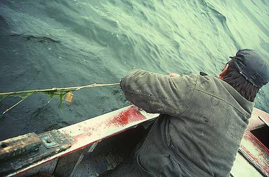рыбалка на самолов видео